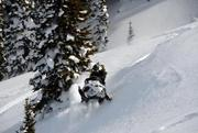 Want a licensed guide to take you on a snowmobiling expedition?